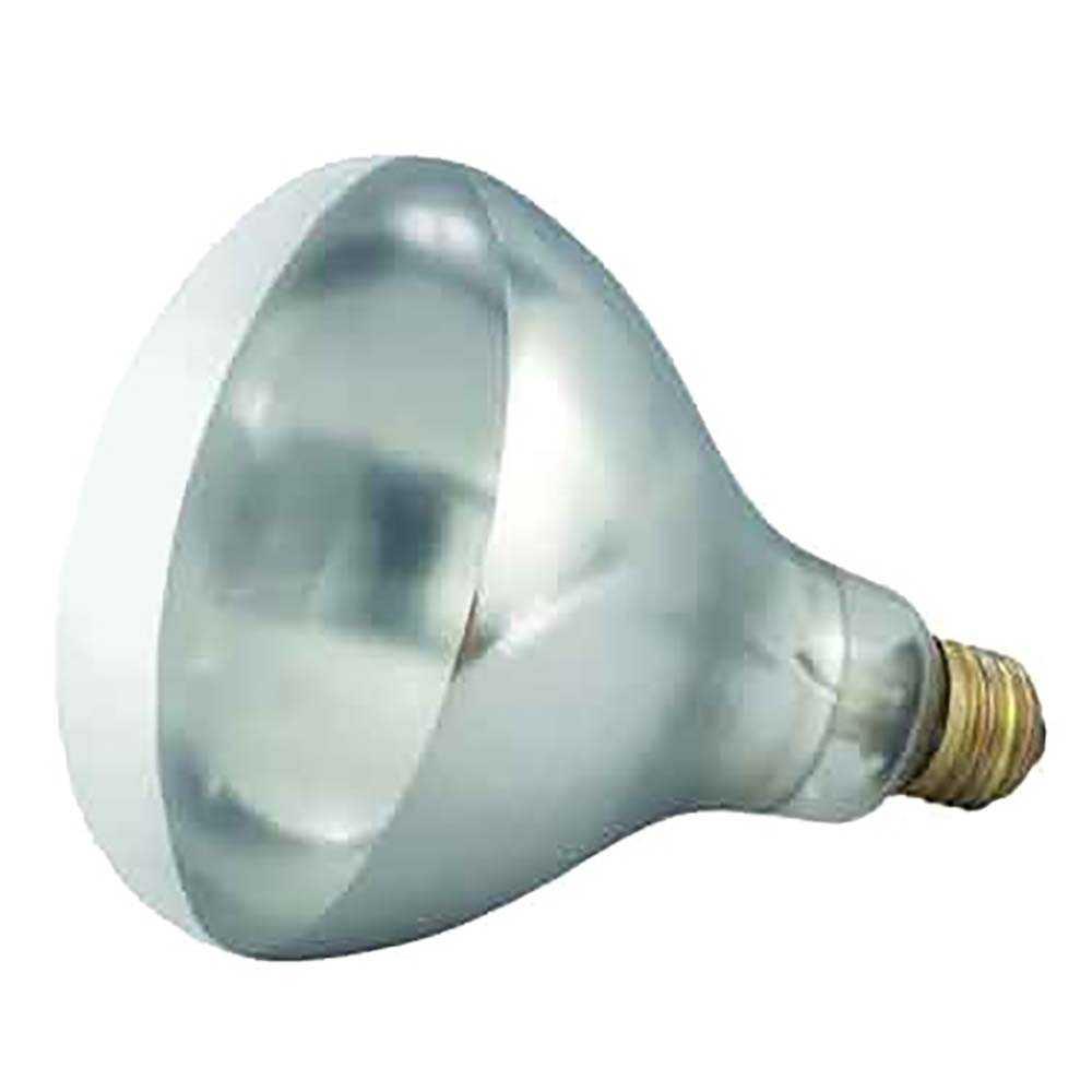 Countertop Bulb Warmer Heat Lamps